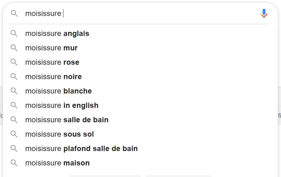 Mots cles suggeres dans Google
