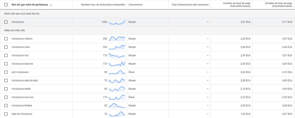 Planificateur de mots cles de la plateforme Google Ads 1